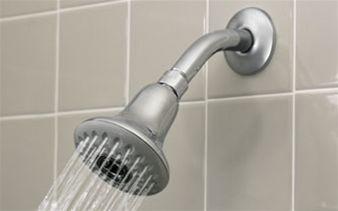 $30 - Capri 2-in-1 Showerhead System, shower head and sprayer.