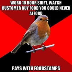 Retail Robin - Work 10 hour shift, watch customer buy food you could never afford pays with foodstamps
