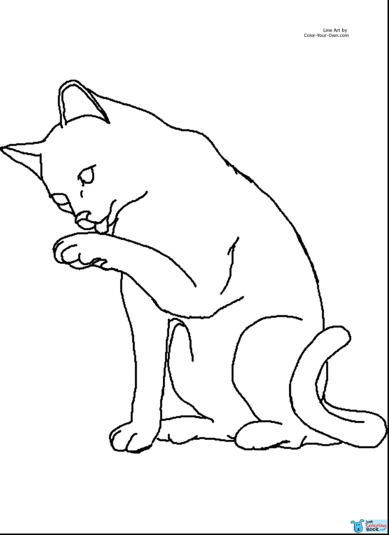 Cats Coloring Cellarpaperco Regarding Smart Cat Coloring Pages Desenhos De Gatos Desenho Desenhos