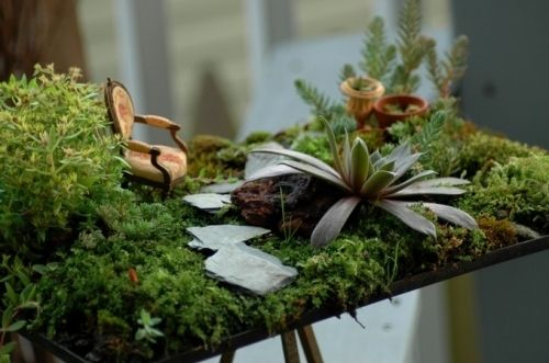 fairy dollhouse furniture and accessories | arranged, dollhouse furniture, fairy, ferns, furniture, lichen