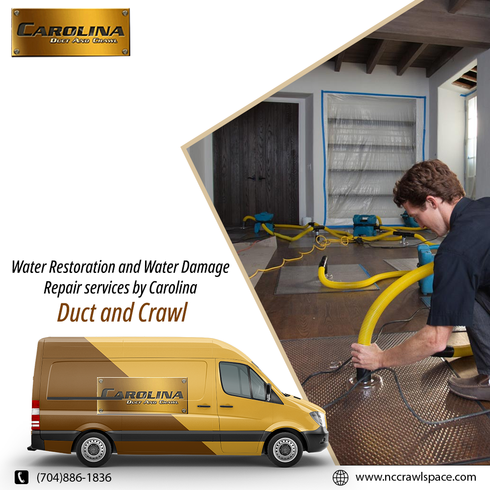 Water damage restoration process are done by our