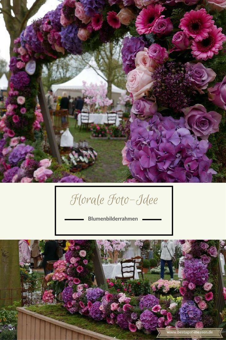 Unterwegs auf der Krefelder Gartenwelt | Tolle fotos, Sommerblumen ...