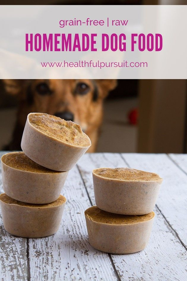 Make your own healthy dog food dogfood homemadedogfood rawdog the best homemade raw dog food recipes for dogs healthy dog food plans forumfinder Choice Image