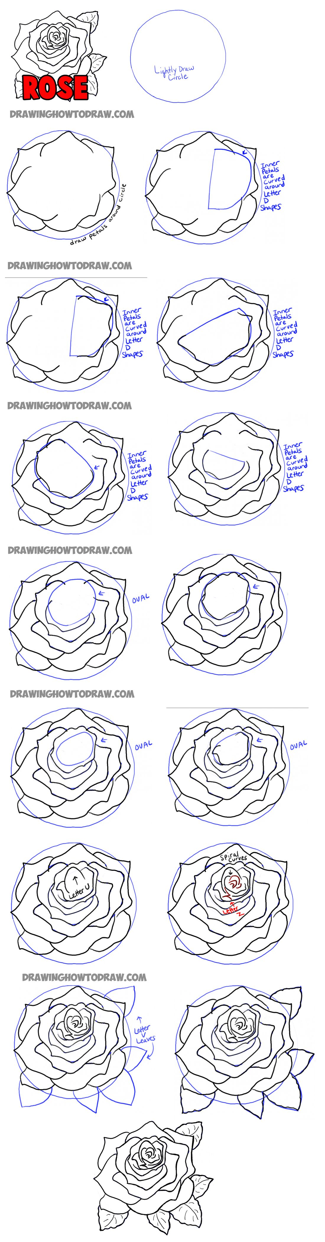 how to draw roses step by step | Pictures/Drawings ... - photo#26
