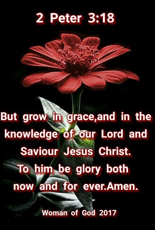 2 Peter 3:18 | Bible/God | Bible quotes, Bible verses quotes