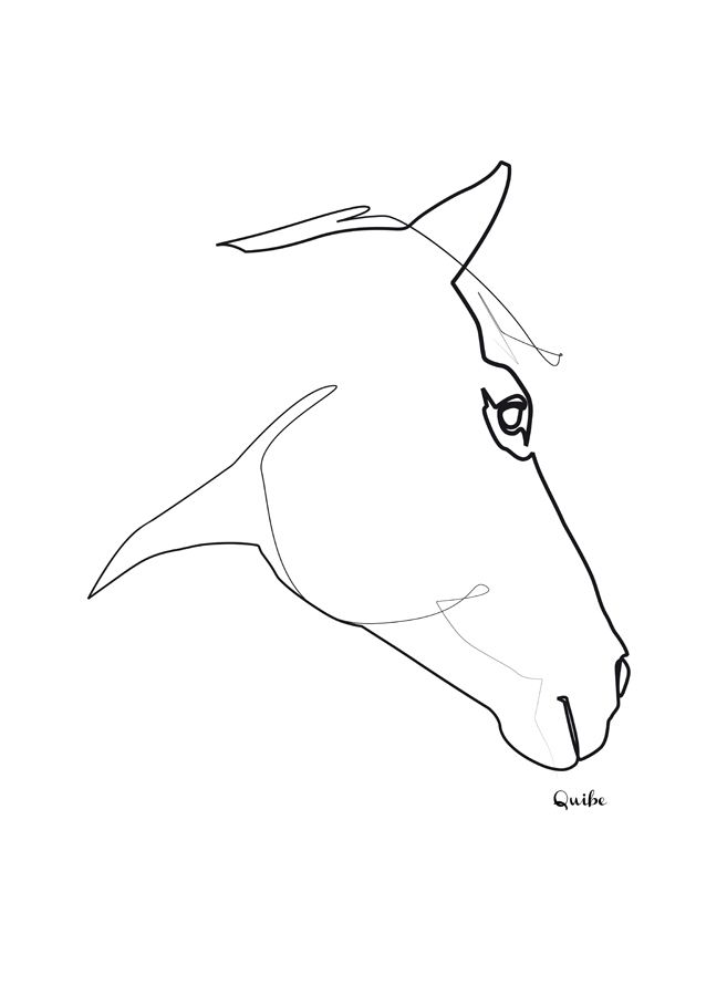 Picasso Line Art Animals : Picasso one line drawing google search