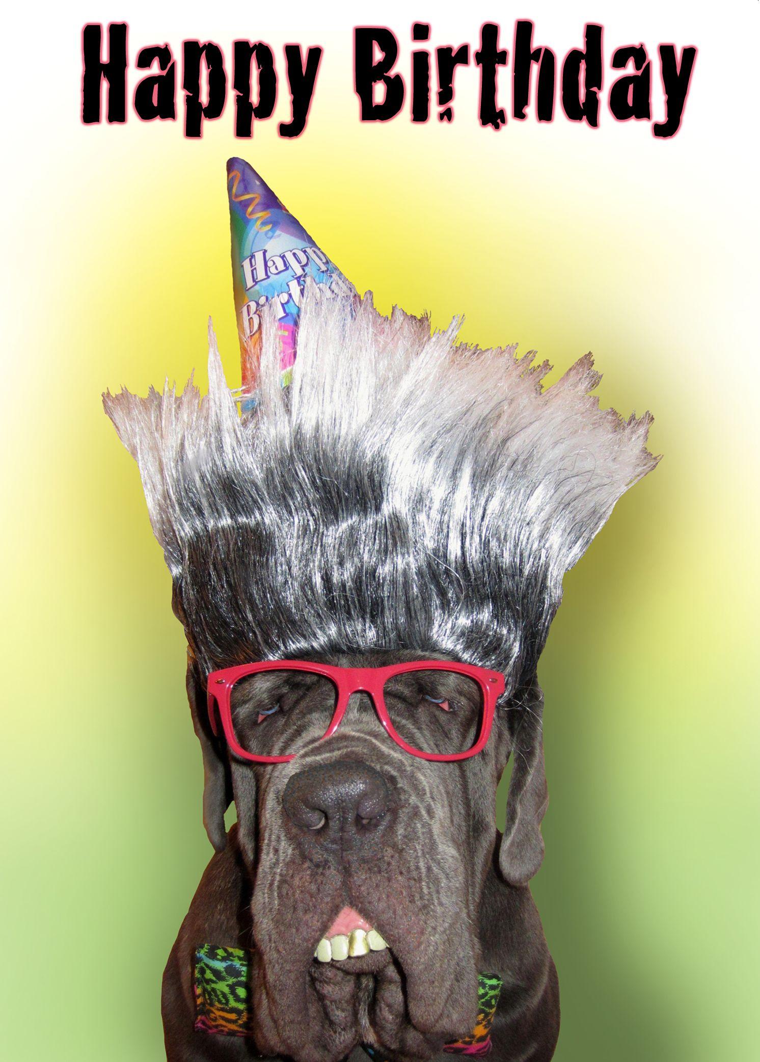 Happy Birthday To My Favorite Freak Happy Birthday Dog Dog Memes Dog Birthday