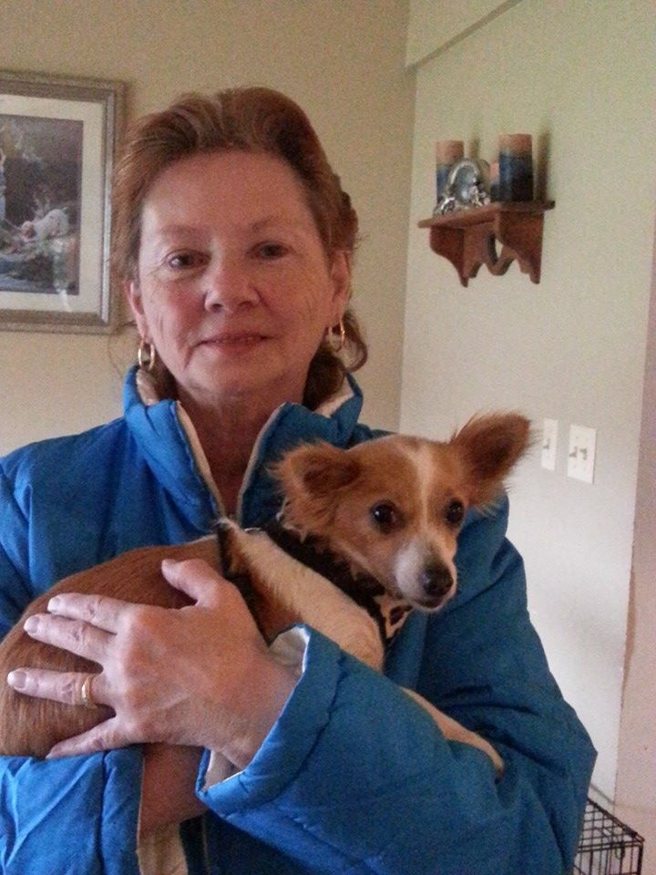 """We are so happy that """"Lady"""" has been adopted! Great job Lady! We know you will have a life of love and happiness!"""