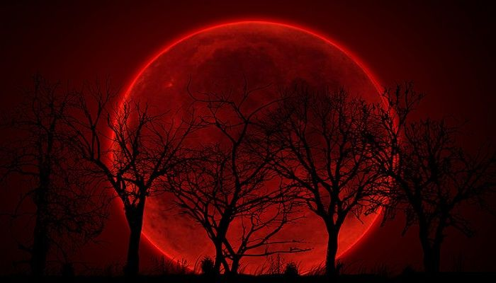 Paisajes De Noche Con Luna Llena Rojo