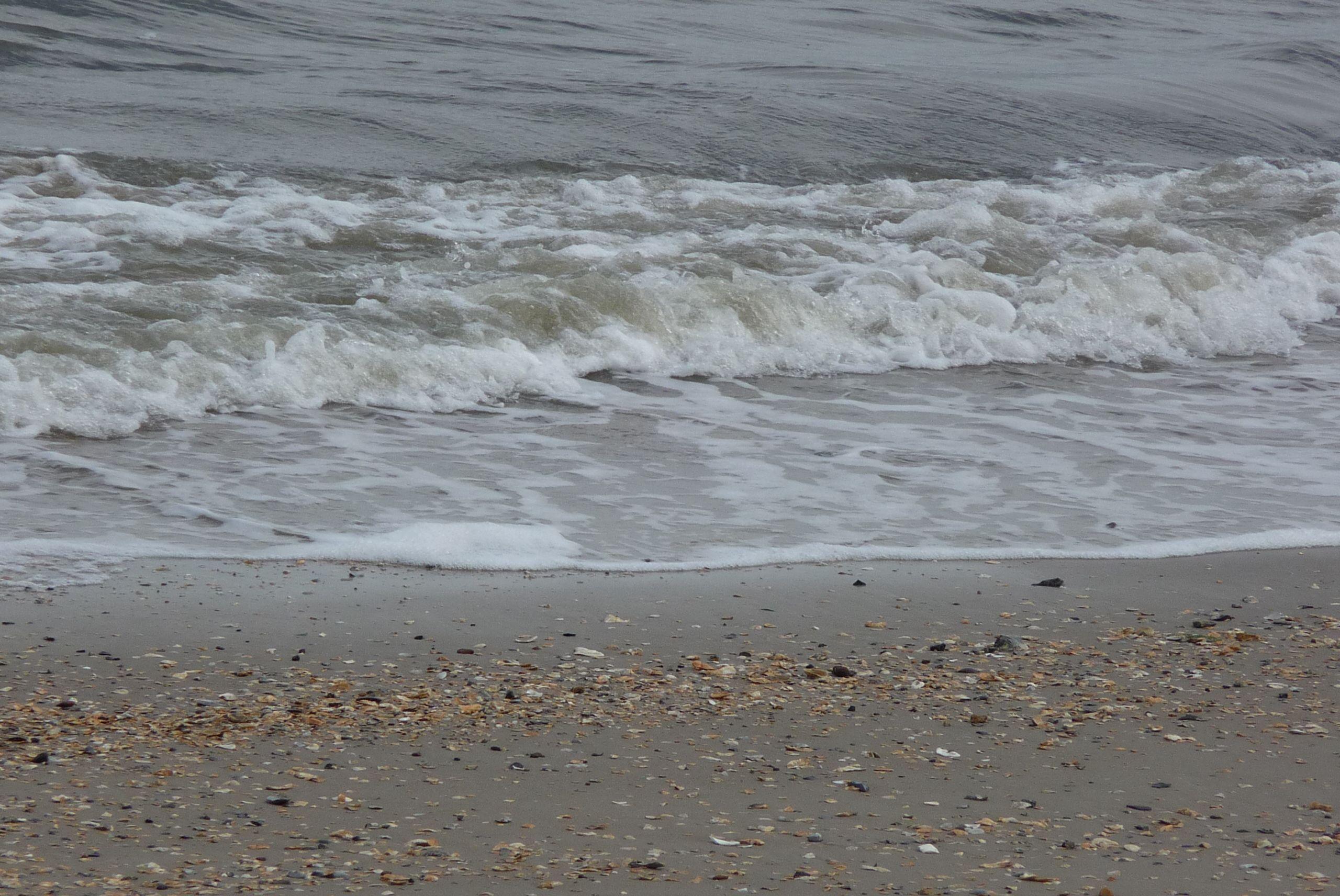 The Atlantic coming ashore in South Carolina