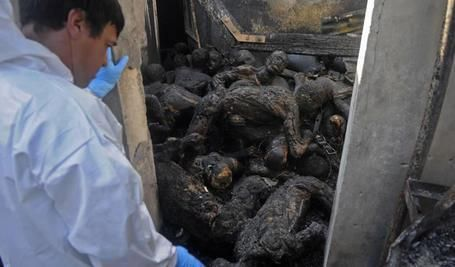 These are burned in the prision of Honduras, 2012