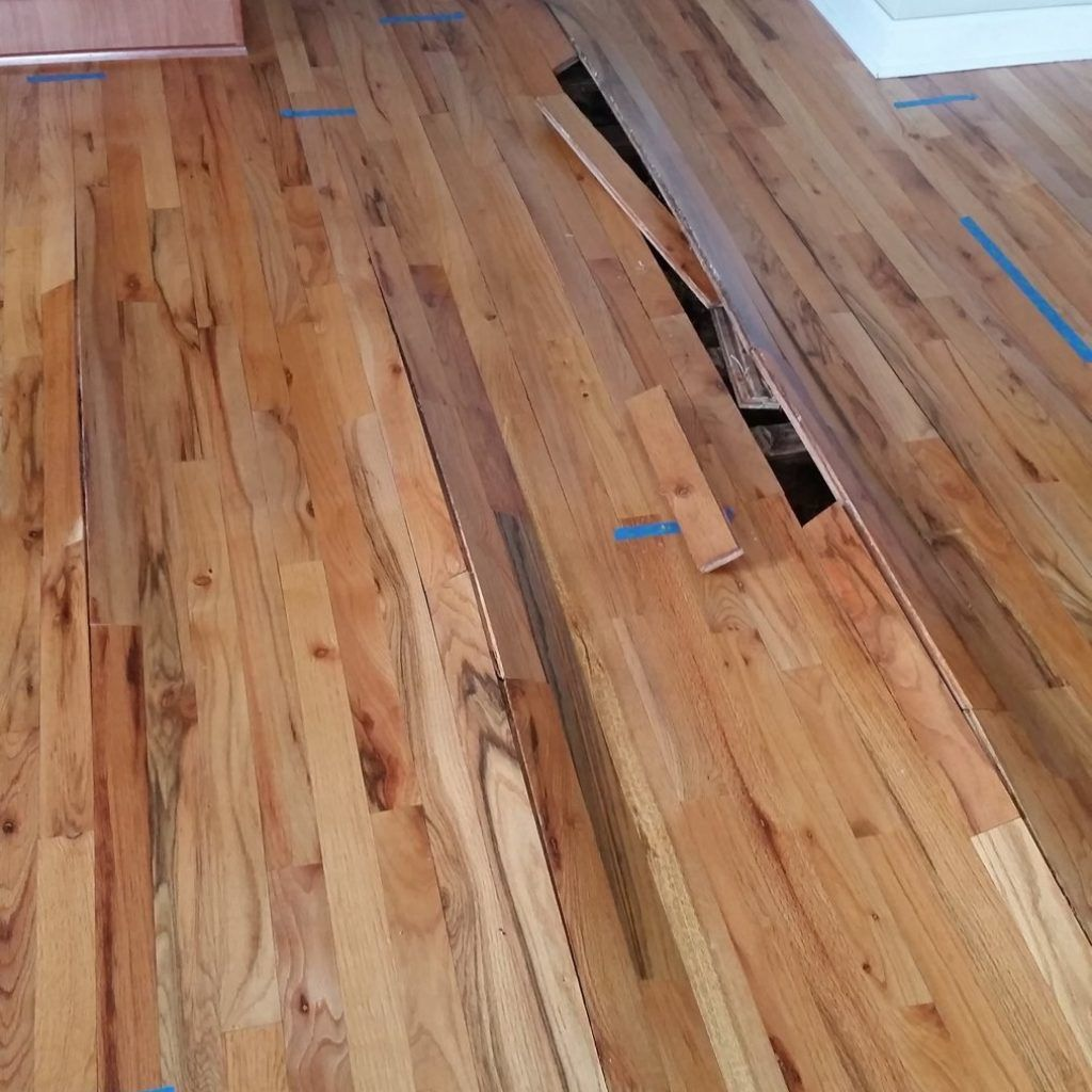 Repairing Water Damaged Hardwood Floors Mr Floor Chicago Intended For Dimensions 1013 X 1800 Washing With It May Be Thought Of As A
