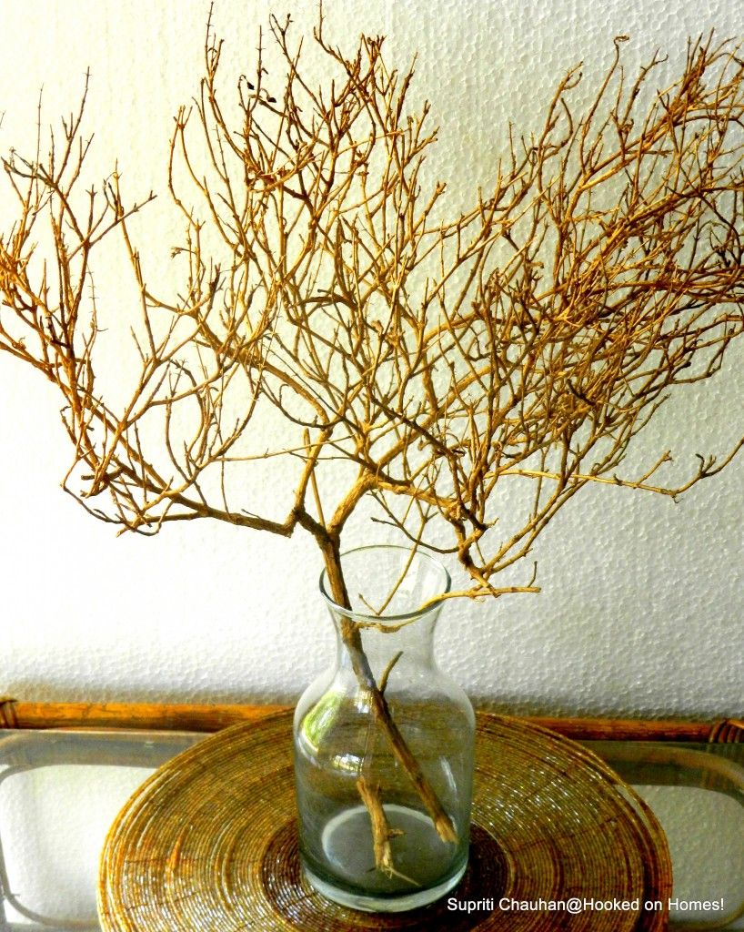 DIY Dried Bush Makeover for Home Decor @ Hooked on Homes!
