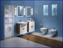 Image result for blue bathroom paint