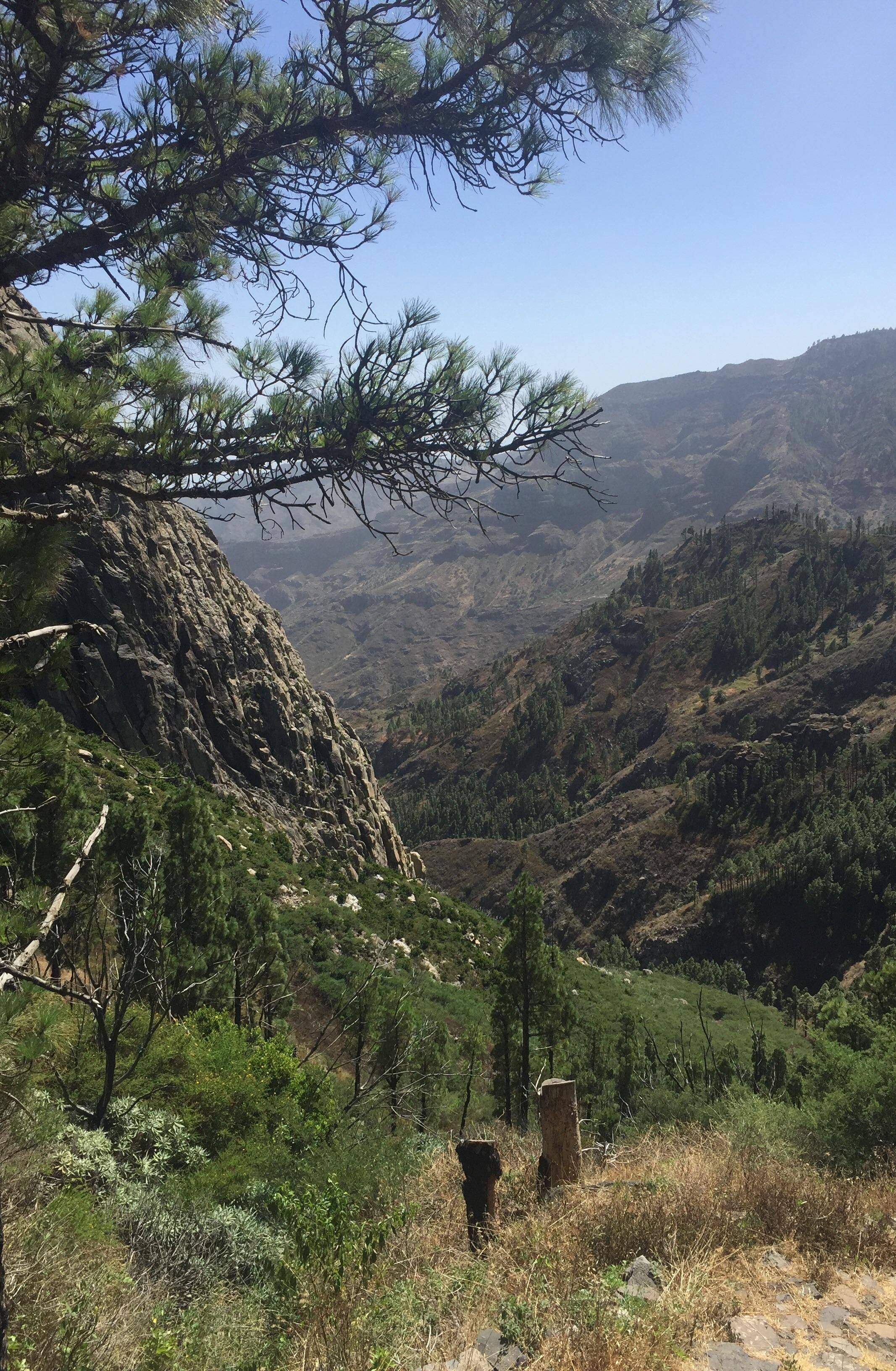 50c080af3c6 I want to go back so bad. La Gomera The Canary Islands. #hiking #camping  #outdoors #nature #travel #backpacking #adventure #marmot #outdoor  #mountains # ...