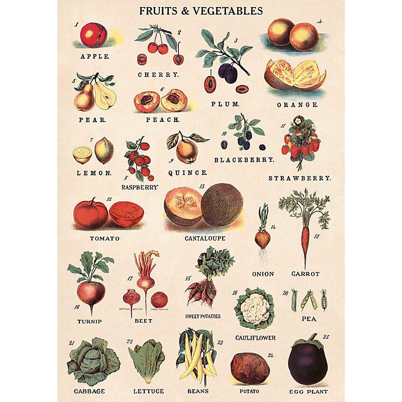 bea2fce4233 Affiche Fruits   Légumes. Poster-papier cadeau vintage des fruits et légumes.  Cavallini