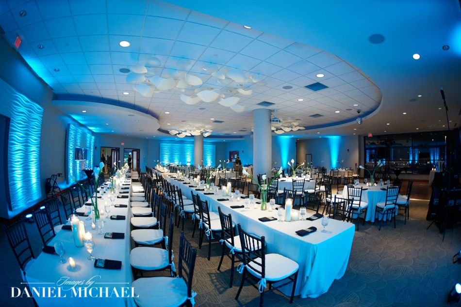 Newport Aquarium Wedding Reception