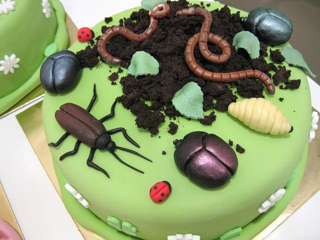 Enjoyable Bug Cake With Images Bug Cake Bug Birthday Cakes Nature Cake Funny Birthday Cards Online Alyptdamsfinfo