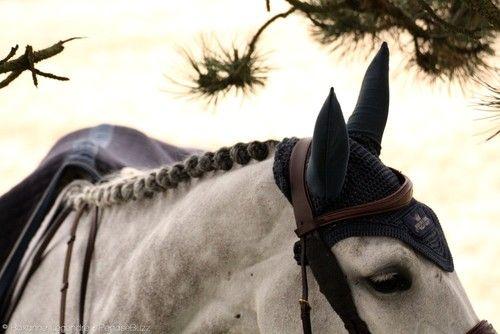 © Roxanne Legendre - Equestrian Photography | Jumping du Touquet 2013