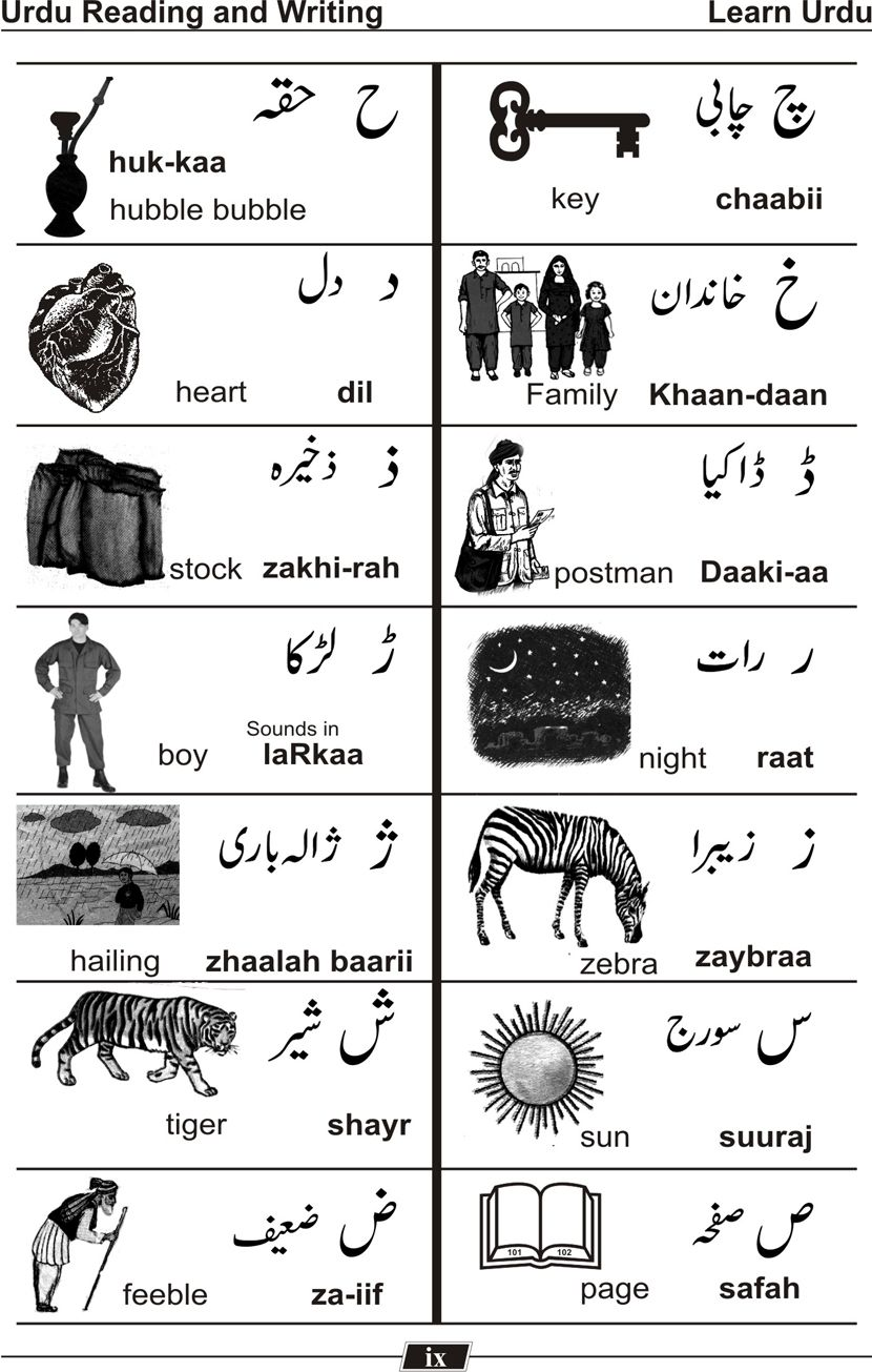 17 best images about urdu language count and 17 best images about urdu language count and different languages