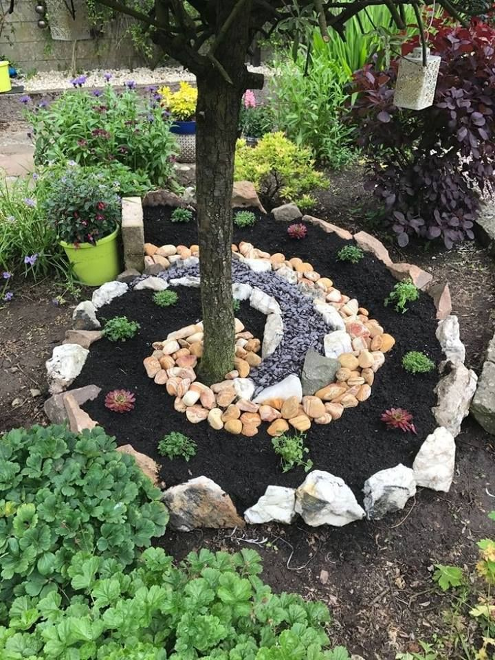 Spiral rock garden at base of tree | Front yard | Garden