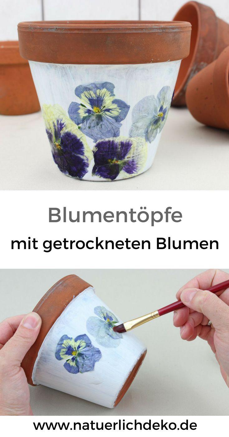blumentopf gestalten mit getrockneten bl ten garden ideas pinterest basteln getrocknete. Black Bedroom Furniture Sets. Home Design Ideas