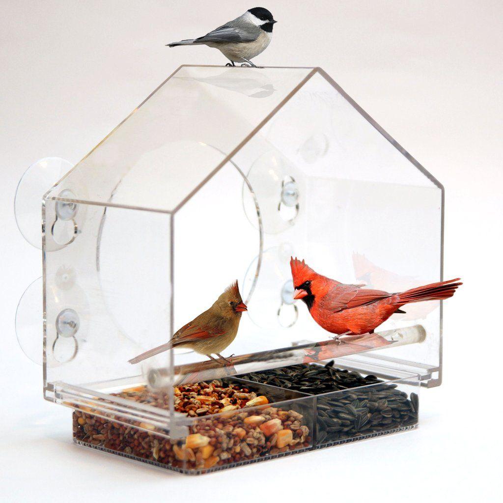 Birds I View Window Bird Feeder