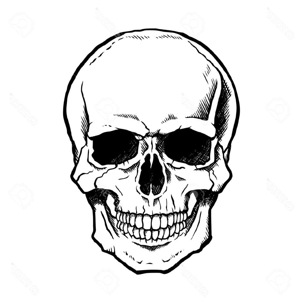 How To Draw A Simple Skull Easy Drawings Free Download Best On 1 13 Drawing Easy Skull Drawings Skulls Drawing Skull Drawing