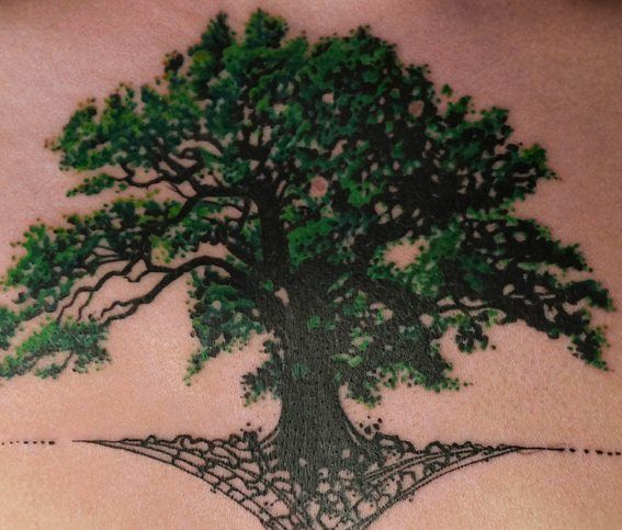 Oak Tree With Roots Tattoo: Oak Tree Tattoo - Google Keresés … …