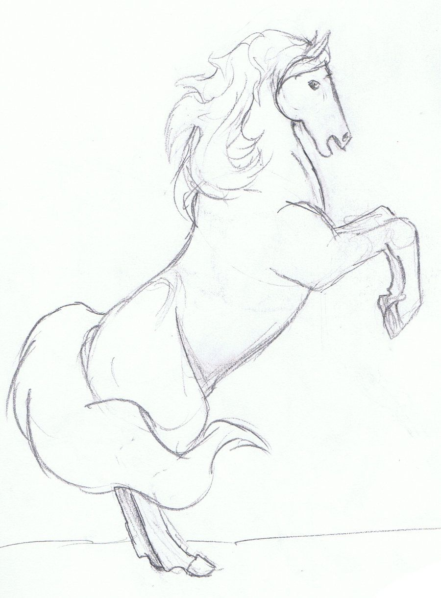 Easy Pencil Drawing Of A Horse