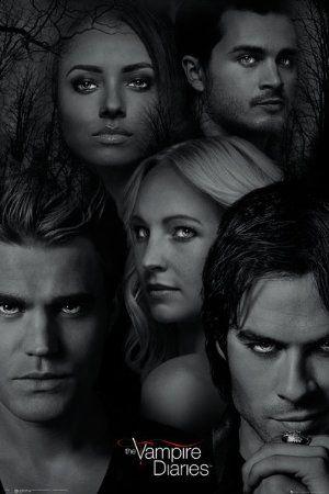 Vampire Diaries Season 1 Sub Indo : vampire, diaries, season, Épinglé, Series