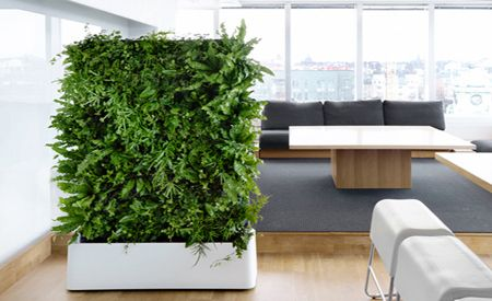 Jardines verticales para interiores Jardines verticales