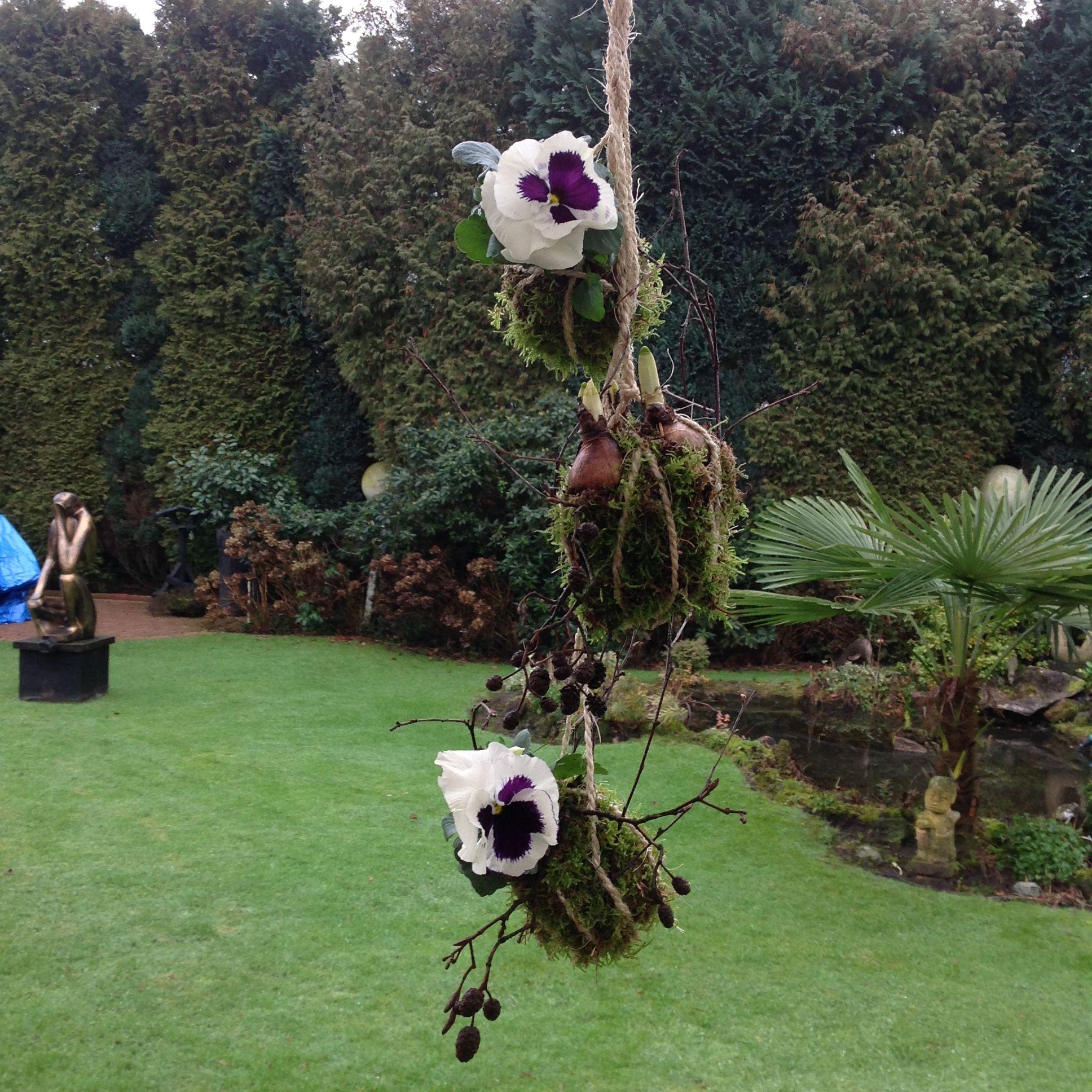 Hangend tuintje, viooltjes en bolletjes omwikkeld met mos en touw.
