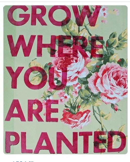 #yes no matter where you are you can grow!!