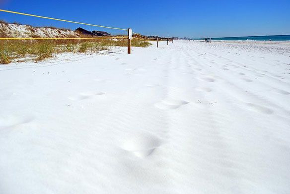 White Sand Crescent Beach Florida Okaloosa County