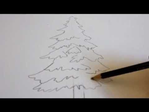 In This Video I Show You How To Draw A Tree Draw An Evergreen Tree This Is My Easy Drawing Tutorial With Tree Drawing Trees Drawing Tutorial Tree Sketches