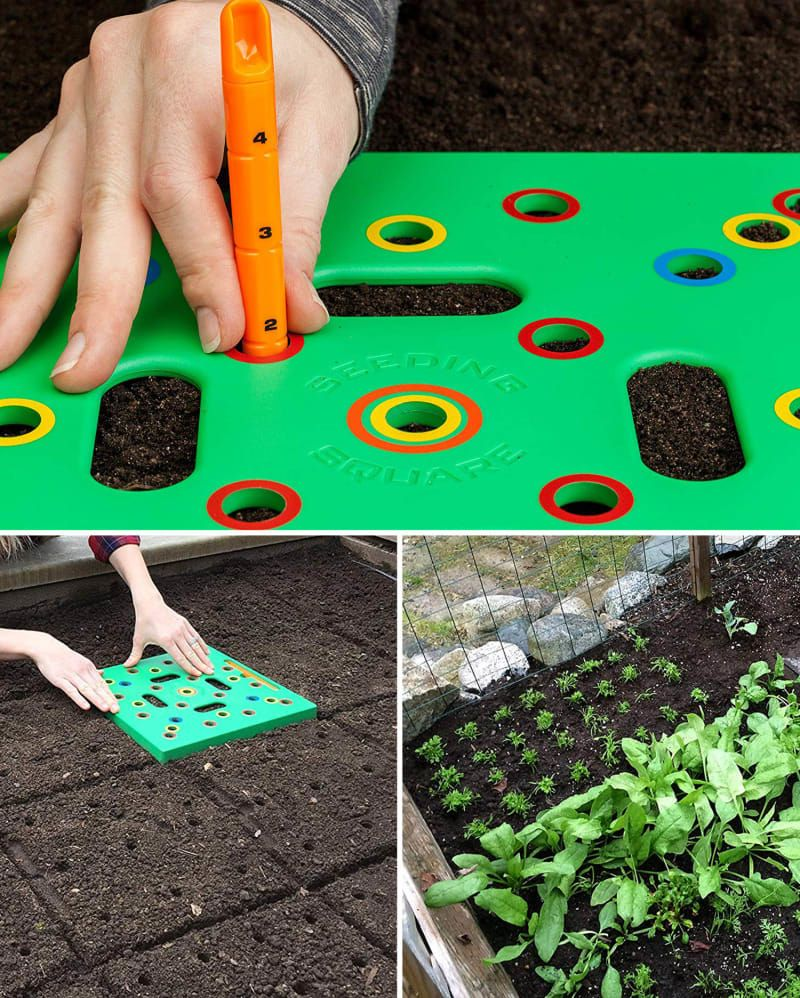Creating Our First Vegetable Garden Advice Please: 31 Useful Gardening Basics Everybody Should Know