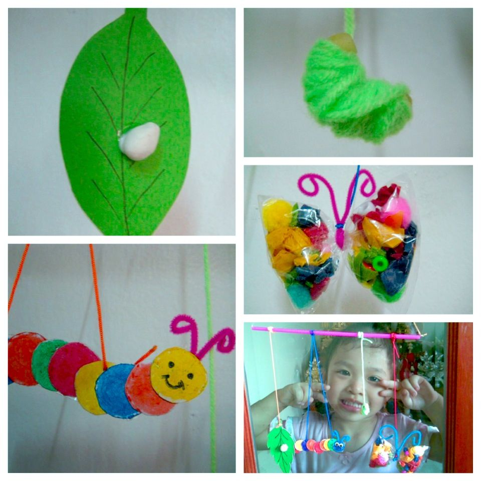 Craft Ideas For Butterfly Life Cycle