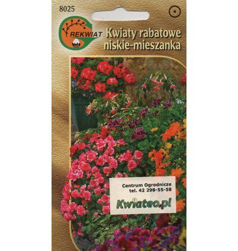 Kwiaty Rabatowe Niskie Jednoroczne Rosliny Mieszanka Nasiona Kwiateo Pl Red Peppercorn Peppercorn