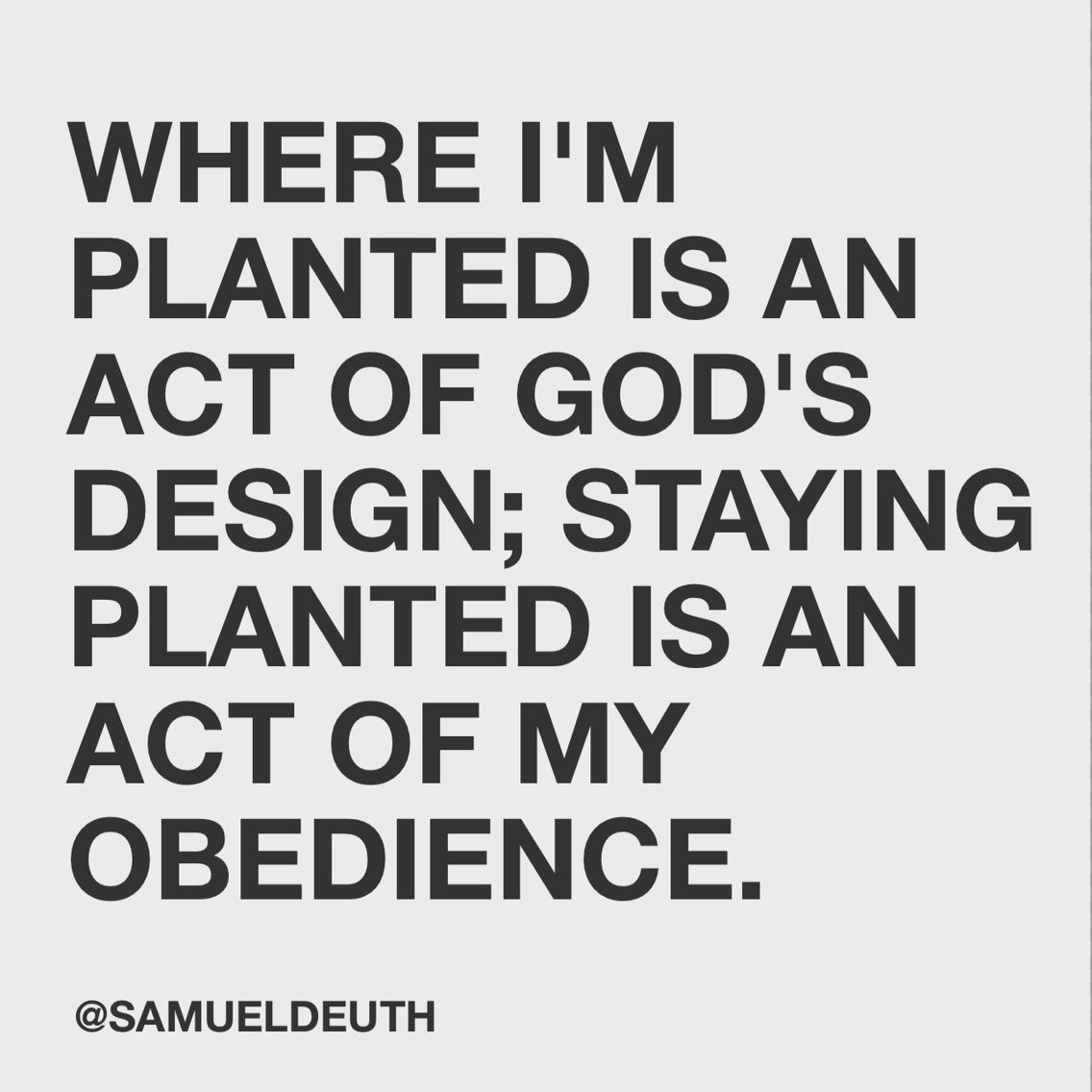 Stay planted; keep thriving. Thank you Jesus for my church