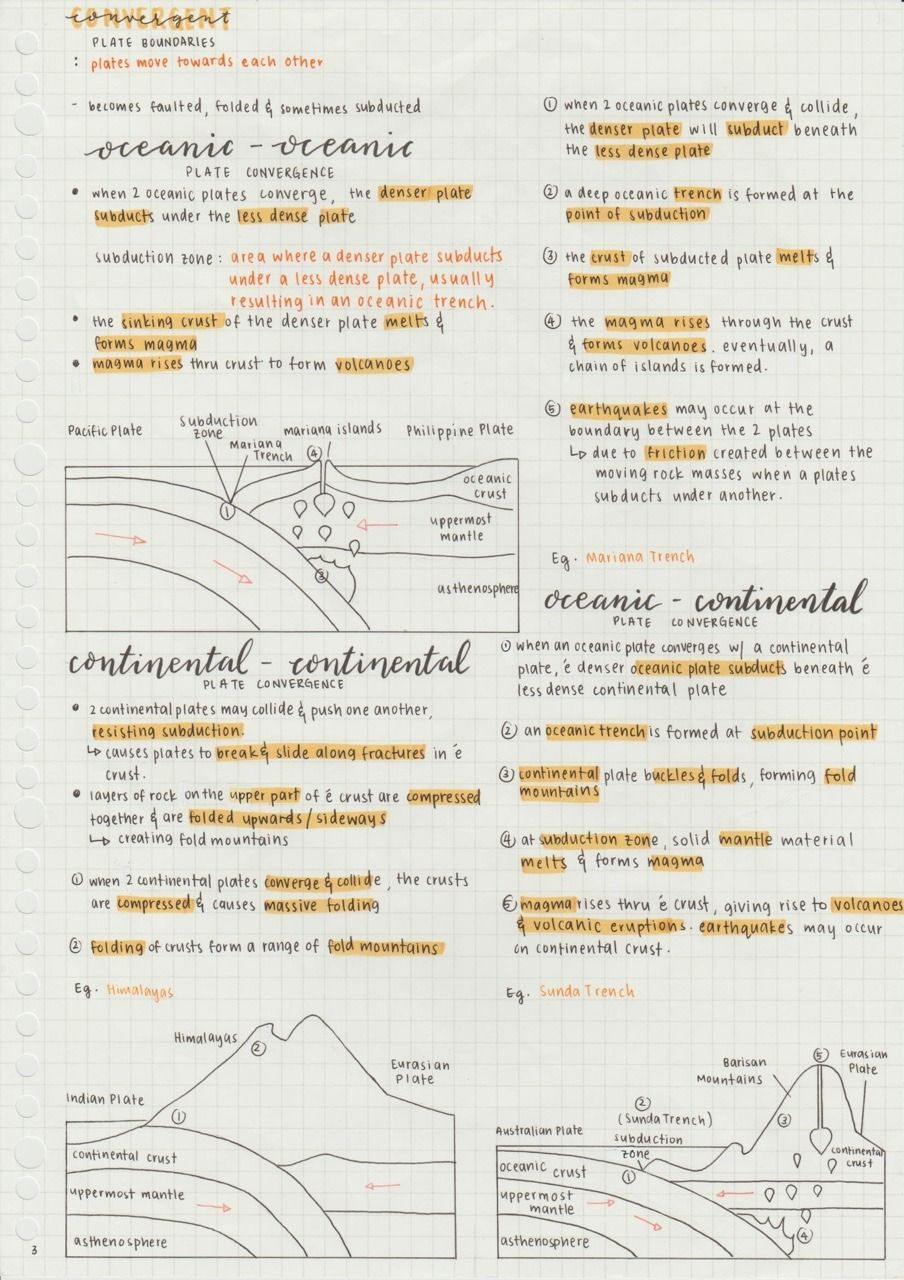 20 Schule Ideen in 20   lernen tipps schule, anatomie lernen ...