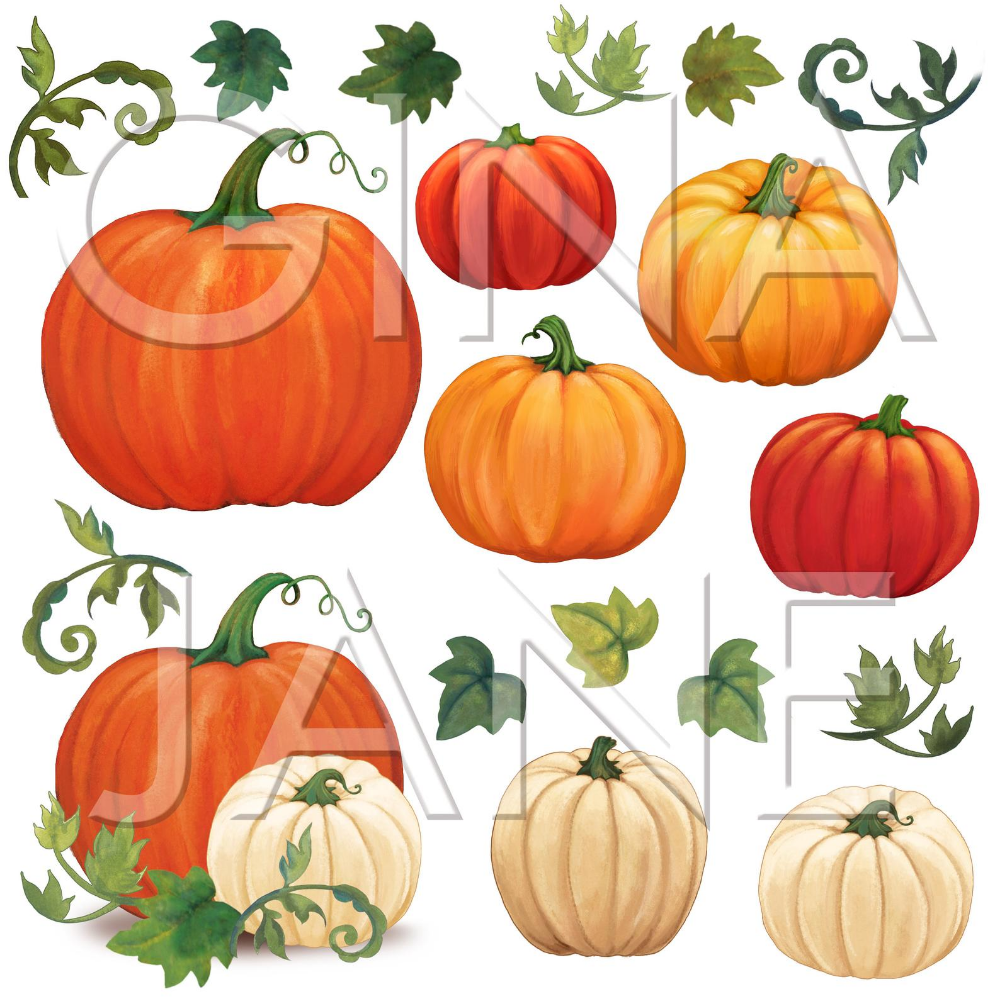 Pumpkins Png Graphics Digital Download By Gina Jane Digital Etsy In 2021 Pumpkin Pumpkin Vine Hand Painting Art