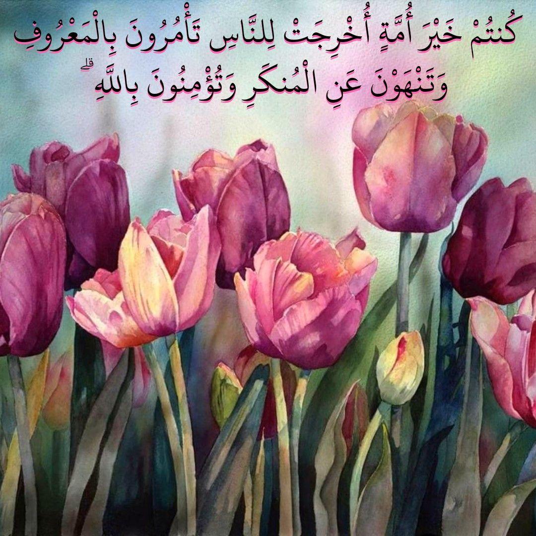 قرآن كريم آية كنتم خير أمه أخرجت للناس Prayer For The Day Painting Prayers