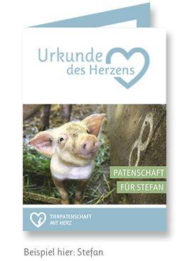 Willi - Tierpatenschaft mit Herz
