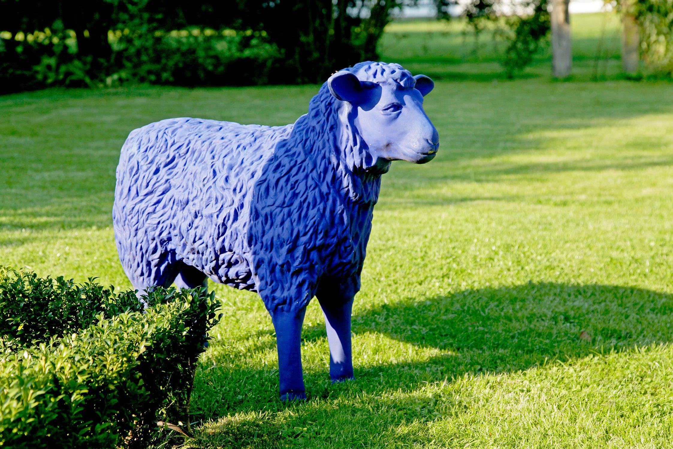 Blaues Schaf Als Farbakzent Galabau Deko Schafe
