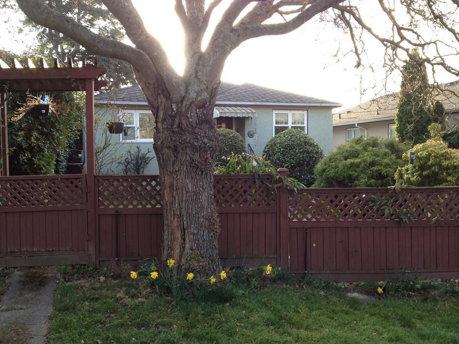 Log In needed 1,100 · Oaklands Large 1 Bedroom Apartment