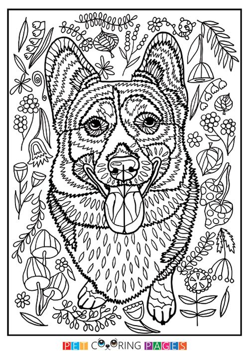 Free printable Pembroke Welsh Corgi coloring page available for ...
