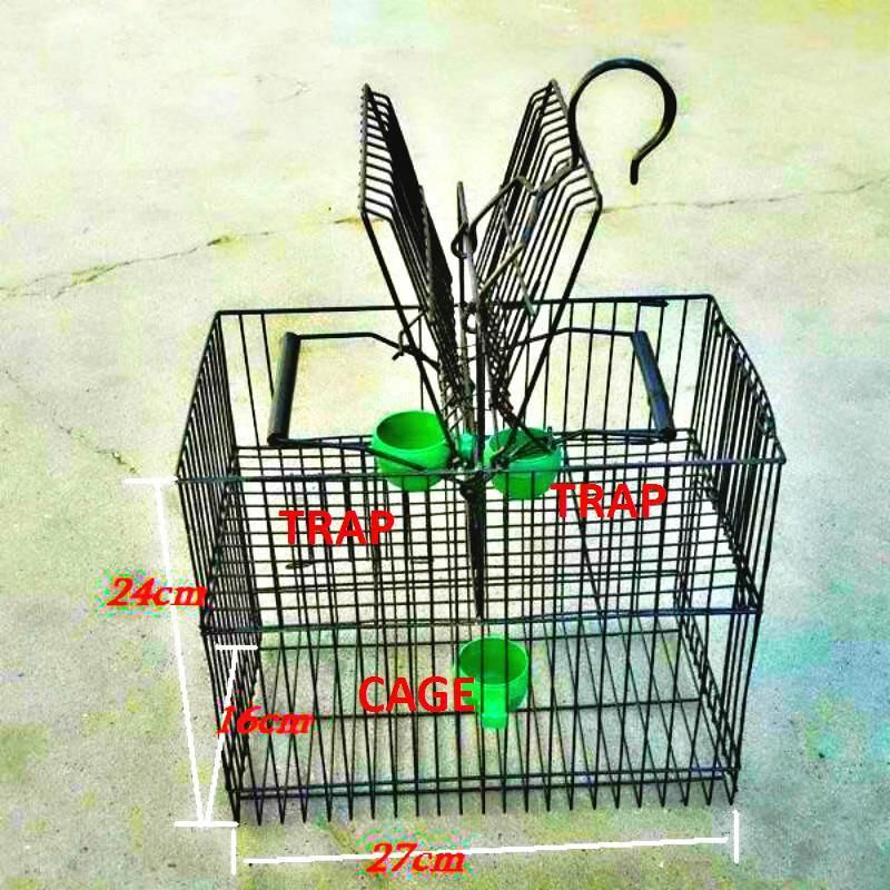 15+ Types of animal traps ideas in 2021