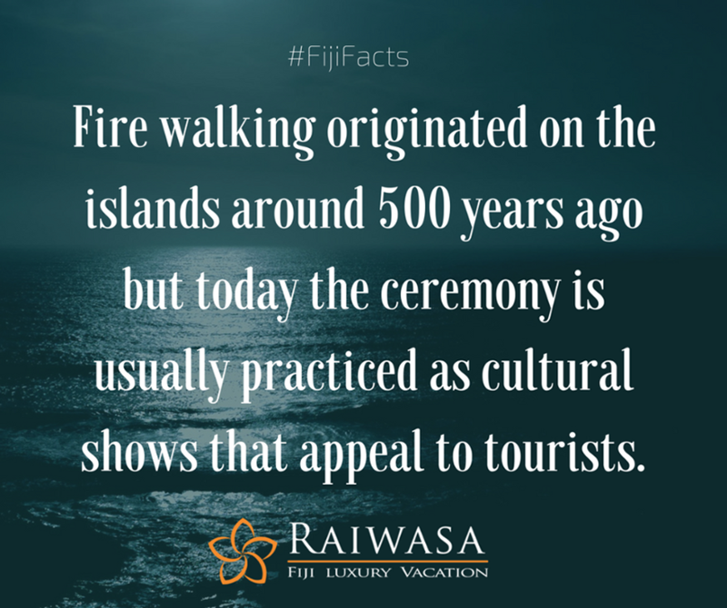 Fire walking originated on the islands around 500 years ago but today the ceremony is usually practiced as cultural shows that appeal to tourists. #FijiFacts