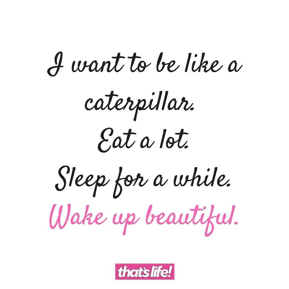 I Want To Be Like A Caterpillar Eat A Lot Sleep For A While Wake
